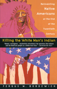 native son book 3 summary