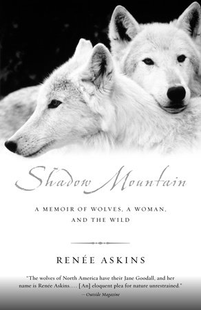 Shadow Mountain by Renee Askins