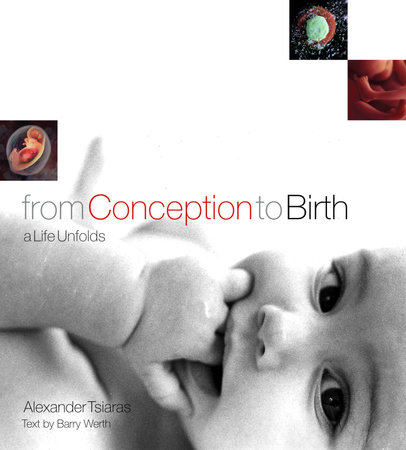 From Conception to Birth by Alexander Tsiaras