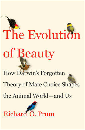 The Evolution of Beauty Book Cover Picture