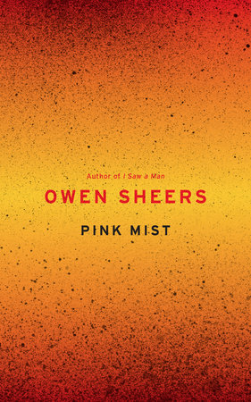Pink Mist by Owen Sheers