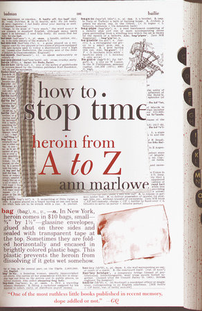 How to Stop Time by Ann Marlowe