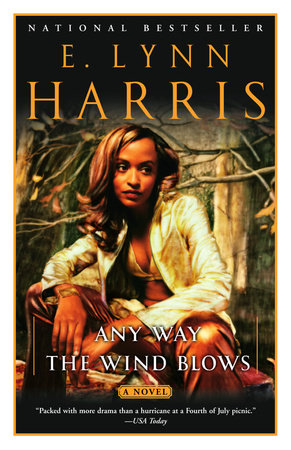 Any Way the Wind Blows by E. Lynn Harris