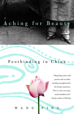 Aching for Beauty by Wang Ping