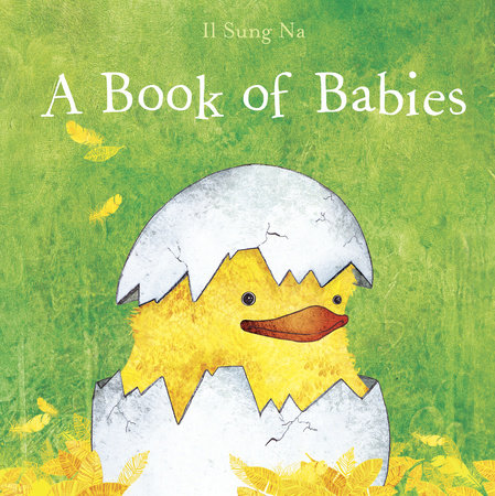 A Book of Babies by Il Sung Na