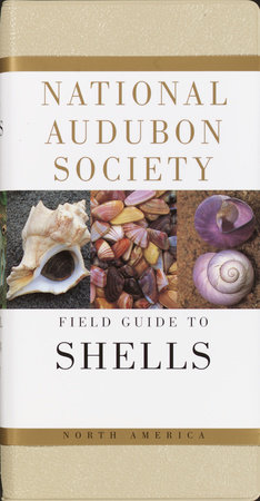 National Audubon Society Field Guide to Shells by National Audubon Society