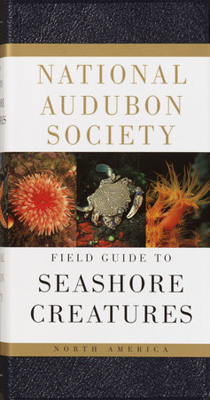 National Audubon Society Field Guide to Seashore Creatures by Norman A. Meinkoth