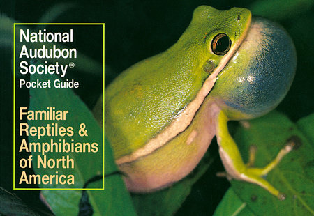 National Audubon Society Pocket Guide to Familiar Reptiles and Amphibians by National Audubon Society