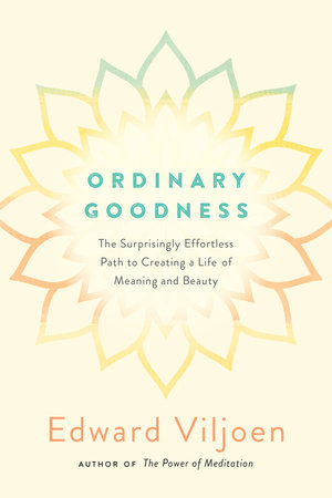 Ordinary Goodness by Mr. Edward Viljoen