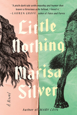 Little Nothing By Marisa Silver 9780399185809