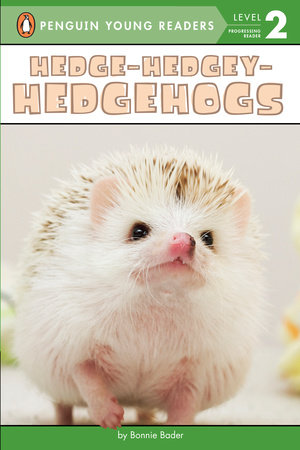 Hedge-Hedgey-Hedgehogs by Bonnie Bader