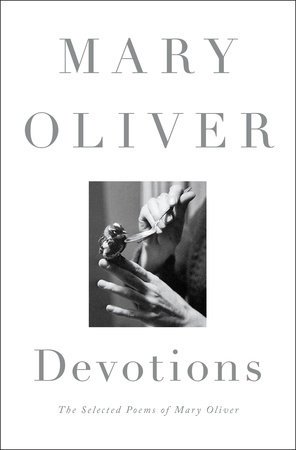 The cover of the book Devotions