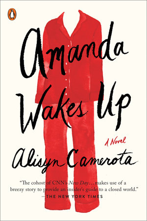 The cover of the book Amanda Wakes Up