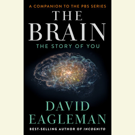 The Brain by David Eagleman