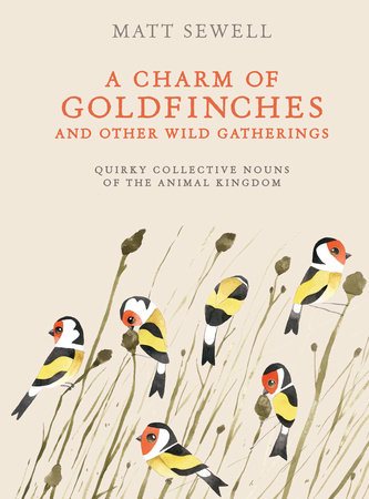 A Charm of Goldfinches and Other Wild Gatherings by Matt Sewell