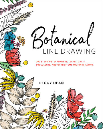 Botanical Line Drawing by Peggy Dean