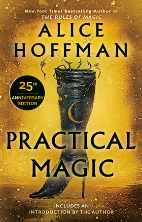 The cover of the book Practical Magic