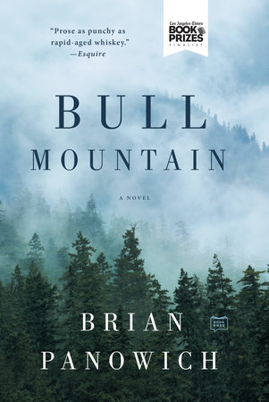 Bull Mountain Book Cover Picture