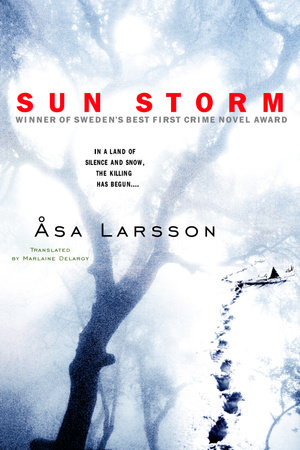 Sun Storm by Asa Larsson
