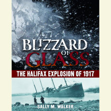 Blizzard of Glass Cover