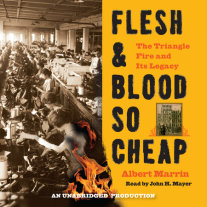 Flesh and Blood So Cheap: The Triangle Fire and Its Legacy Cover