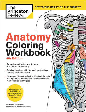 Anatomy Coloring Workbook, 4th Edition by Princeton Review, Edward ...