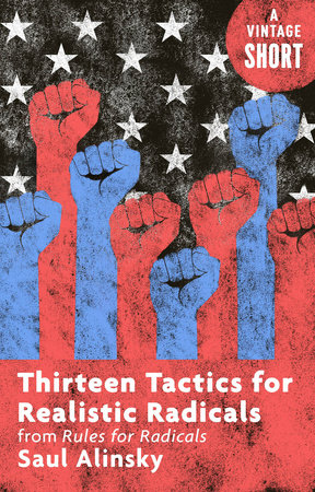 The cover of the book Thirteen Tactics for Realistic Radicals