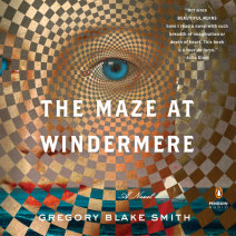 The Maze at Windermere Cover
