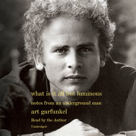 What Is It All but Luminous by Art Garfunkel