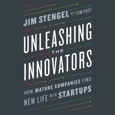 Unleashing the Innovators cover