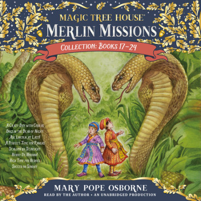 Merlin Missions Collection: Books 17-24 cover