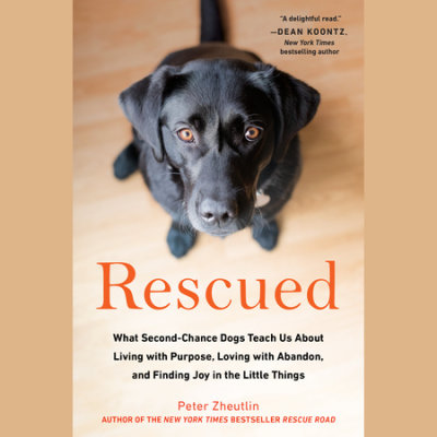 Rescued cover