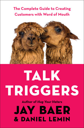 Talk Triggers by Jay Baer and Daniel Lemin