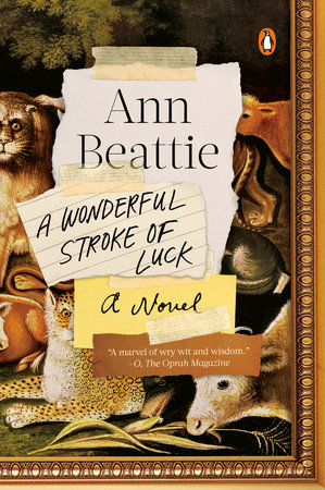 Image result for A Wonderful Stroke of Luck: A Novel