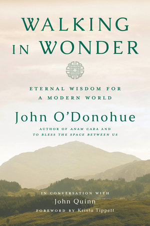 The cover of the book Walking in Wonder