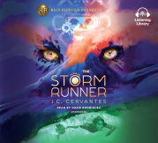 The Storm Runner cover small