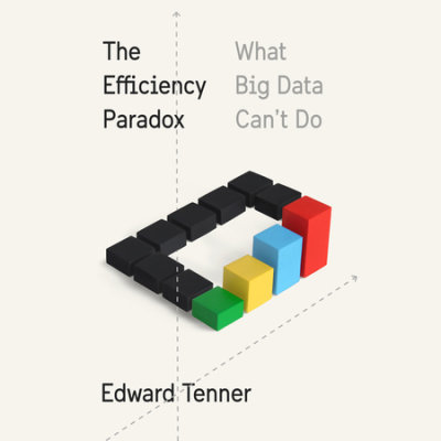The Efficiency Paradox cover