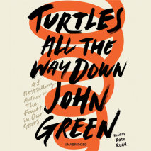 Turtles All the Way Down Cover