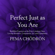 Perfect Just as You Are Cover