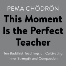 This Moment Is the Perfect Teacher Cover