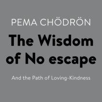 The Wisdom of No Escape Cover