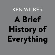 A Brief History of Everything Cover