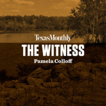 The Witness Cover