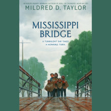 Mississippi Bridge Cover