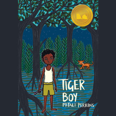 Tiger Boy cover