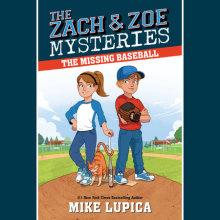 The Missing Baseball Cover