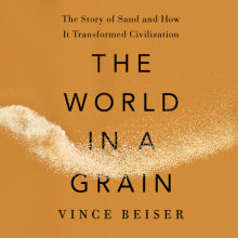 The World in a Grain Cover