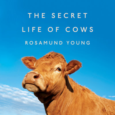 The Secret Life of Cows cover