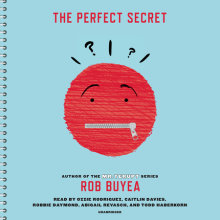 The Perfect Secret Cover