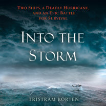Into the Storm Cover